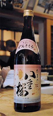 すっきり聡明な味わいが魅力の「たまの八重桜」。火入れしているので熱燗でもOK。